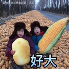 #宝宝##搞笑##另类喊麦##我要上热门#觉得农民不容易的记得点赞哦……