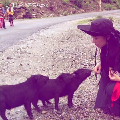 #随手美拍##音乐#潇潇行走在西藏(之三)#照片电影#