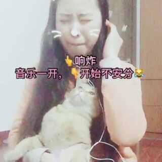 #戴耳机唱歌##我要上热门@美拍小助手# 本来还很安分的猫从开口的那一刻起……自己看😹😹😹