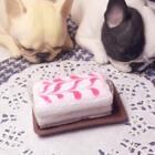 #手工#真的有蛋糕香味的粘土蛋糕。今天没用拍摄软件直接用美拍拍了。纯粉色果酱也没有😂只好用白色调https://weidian.com/s/892509438?wfr=c&ifr=shopdetail