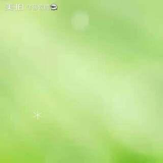 猫星人后院!来看看@☆🐲青龙🐉☆ 制作,我发布!🐱🐱🐱 #喵##猫咪后院#后排@人,支持人.@粉月兔🐰 @大眼猴🐵 @memory兮颜.