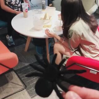 #有蟑螂##有蜘蛛##热门#我觉得这个吓人的效果会比蟑螂好一点哈哈哈哈哈哈哈