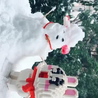 南方的雪只能这么玩😄😄#下雪啦##一剪梅#