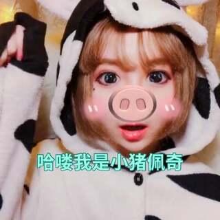哈喽我是小猪乔乐#小猪佩奇##开学啦#你们最喜欢看的动画或者动漫是?我先来我喜欢海贼王#精选#