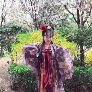汉服小姐姐的海草舞超可爱!#我要上热门##海草舞##舞蹈#@美拍小助手
