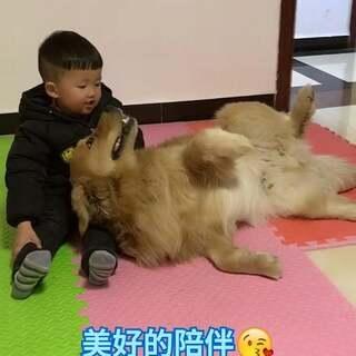 #宠物##宝宝#它是我们人类的好朋友,请善待它们