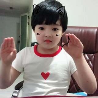 #学猫叫手势舞#傻萌傻萌的小猫咪??????