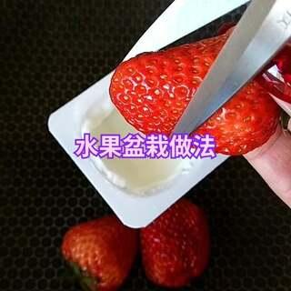 水果盆栽【做法】????#热门##美食##水果盆栽#