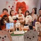 生日快乐宝贝女儿 #宠物##王雪晶##宠物生日快乐##宠物狗狗##博美犬##白色博美犬#